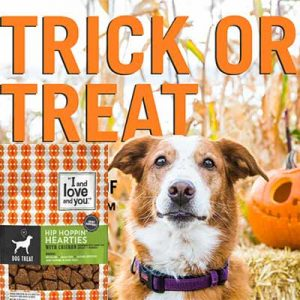 Free Bag of Dog Treats