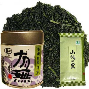 Free Fukamushicha Yamaga Tea