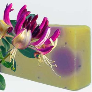 Free Turncoat Creamery Soap Sample