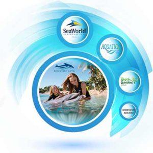 Free SeaWorld, Aquatica, Busch Gardens DVD