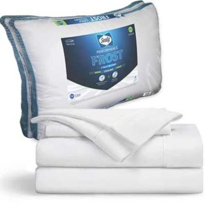 Free Sealy Mattress and Pillows