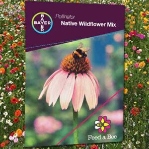 Free Wildflower Seed Packets