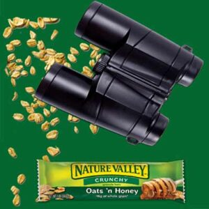 Free NATURE VALLEY Product Box