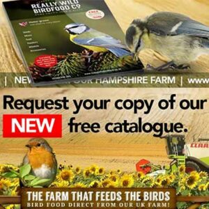 Free Really Wild BirdFood Catalogue