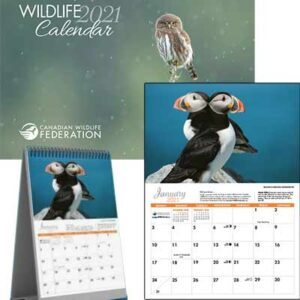 Free 2021 Wildlife Calendar